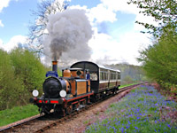 Stepney with Bluebell Special - 1 May 2008 - Derek Hayward