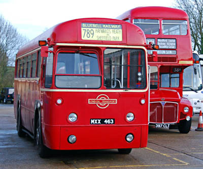Vintage Buses at Sheffield Park - 15 November 2009 - Derek Hayward