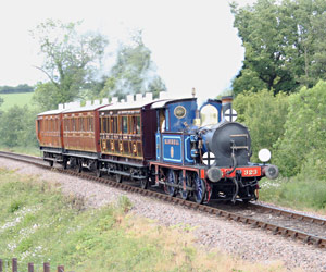 Bluebell with the three 4-wheelers - Andrew Strongitharm - 26 May 2011