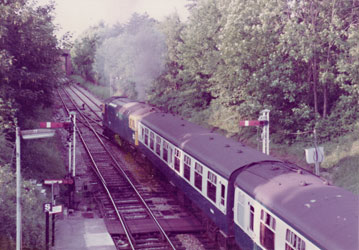 Class 33 with ECS at the North end of East Grinstead - Martin Malins - 1983