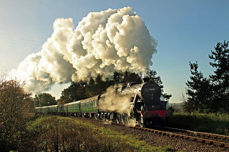 45231 at Horsted House Farm - Yoshi Hashida - 16 November 2013