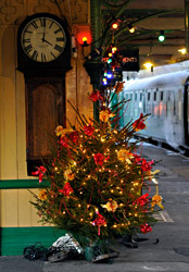 Christmas Tree at Horsted Keynes - Derek Hayward - 13 December 2014