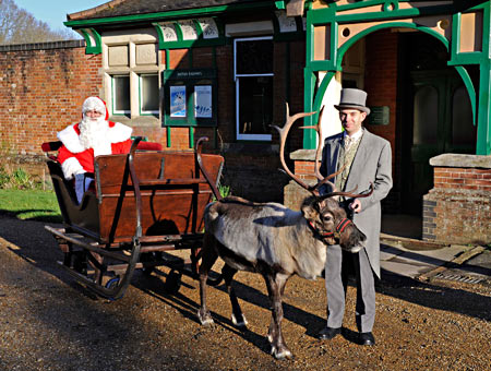 Reindeer with Santa's sleigh - Derek Hayward - 13 December 2014