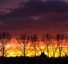 Sunset at Sheffield Park - Derek Hayward - 20 December 2014