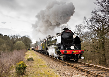 S15 heads the Cathedrals Express at Black Hut - Andrew Shapland - 21 March 2015