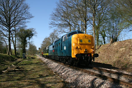 09 hauling the Deltics south at Imberhorne Lane Cutting - Alan Gomme - 15 April 2015