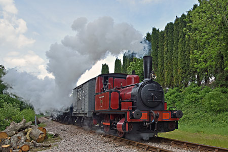 Baxter at West Hoathly with vintage goods train - Brian Lacey - 30 May 2015