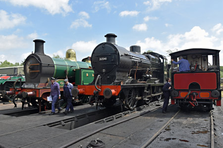 H, Q and Baxter on shed - Brian Lacey - 13 June 2015