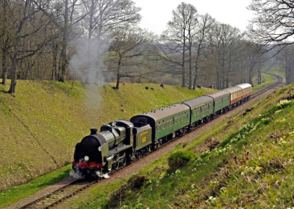 U-class with primroses in cutting approaching 3 Arch Bridge - Derek Hayward - 10 April 2015