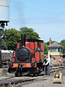 Baxter in down yard at Horsted Keynes - Huw Lloyd - 22 August 2015
