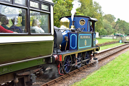 323 with Autumn Tints train at West Hoathly - Brian Lacey - 19 October 2015