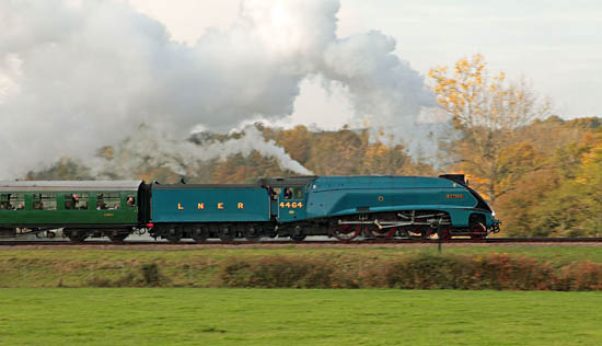 4464 Bittern at speed - Yoshi Hashida - 31 October 2015
