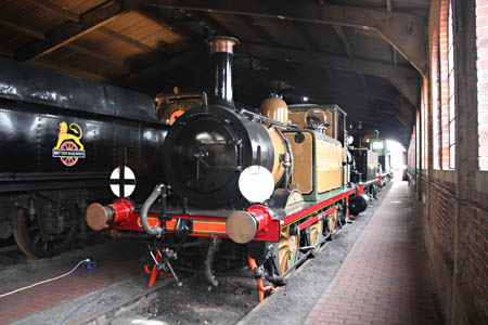 Stepney in the Loco Shed - Tony Sullivan - 17 December 2015