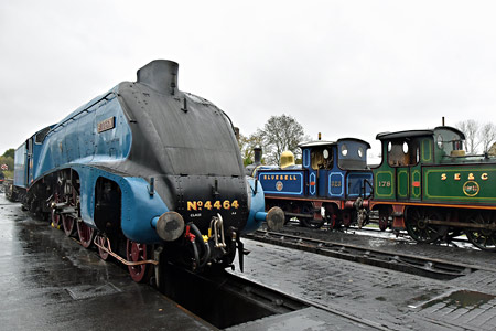A4 and P-tanks on shed at Sheffield Park - Brian Lacey - 7 November 2015