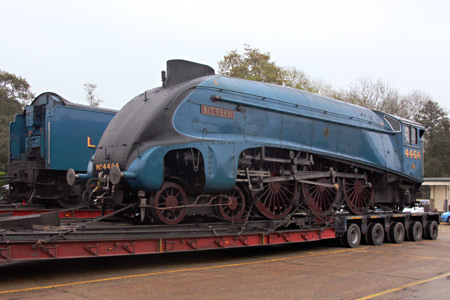 Bittern arrived at Sheffield Park - Tony Sullivan - 29 October 2015