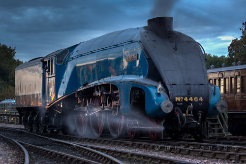 4464 Bittern in light steam at Sheffied Park - Mike Anton - 30 October 2015