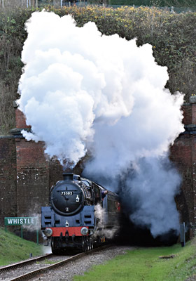73082 at West Hoathly - Brian Lacey - 8 December 2015
