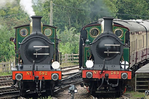 C-class and H-class at Sheffield Park - Brian Lacey - 17 September 2016