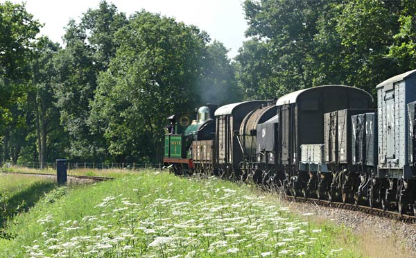 H-class with the vintage goods train - Keith Duke - 23 July 2016