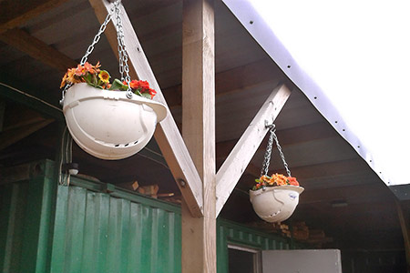 New hanging baskets - Bruce Healey - 20 March 2019