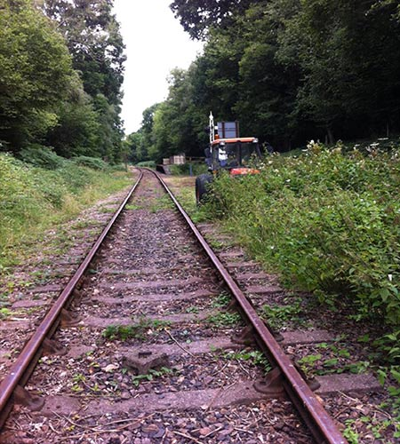 Lineside Clearance - August 2020