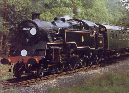 80064 at work on the Bluebell - Mike Esau