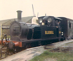 323 'Bluebell' at Sheffield Park in 1962 - Andrew Waller