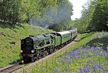 34059 with service train in Lindfield Wood - Derek Hayward - 3 May 2011