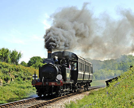 55 Stepney with Bluebell Special at Rock Cutting - Derek Hayward - 3 May 2011