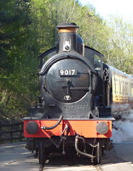 Dukedog during a photo charter at South Devon Railway - Thomas Breed - 7 April 2011