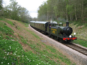 B473 in Lindfield Wood - Brian Kidman - 13 April 2011