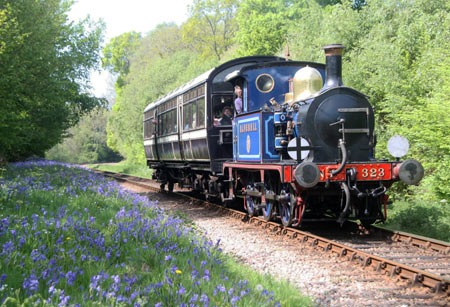 323 with a Spring Special amongst the Bluebells - Andrew Strongitharm - 27 April 2011