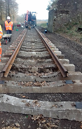 Rails in place - Bruce Healey - 9 January 2019