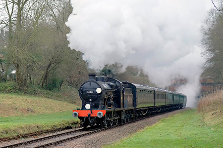 Q-class at West Hoathly with SR carriages - Brian Lacey - 28 December 2019