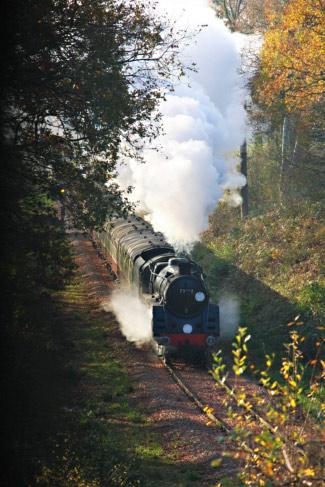 Camelot on Santa Special Train