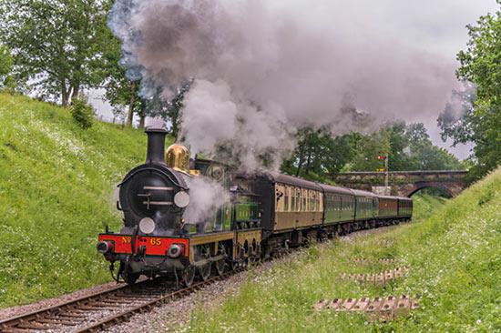 No. 65 at Horsted House Bridge - David Cable - 19 June 2021
