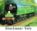 Blackmore Vale